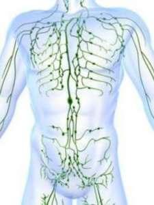 ganglions lymphatiques